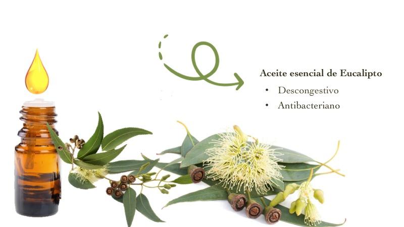 aceite-eucalipto-beneficios