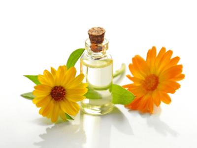 calendula_aceite_esencial